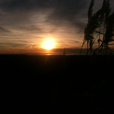 my sunsets (11)