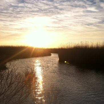 my sunsets (12)