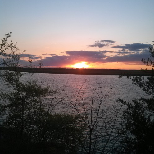 my sunsets (16)