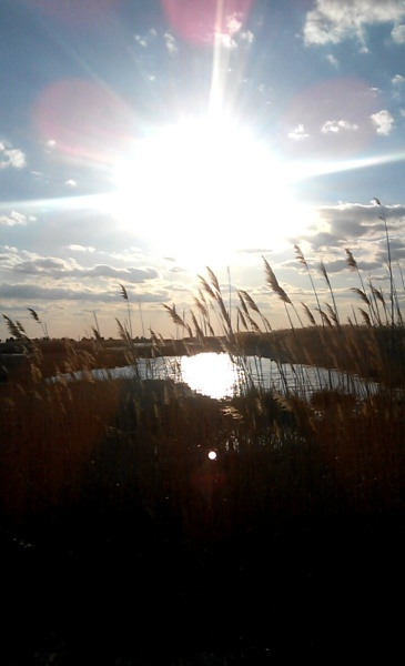 my sunsets (2)
