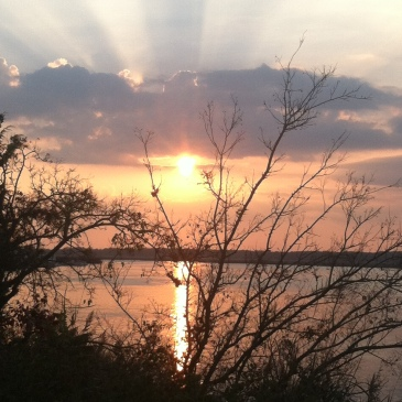my sunsets (7)