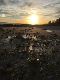 sunset walk oct 17 (17)