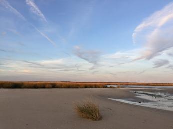 sunset walk oct 17 (26)