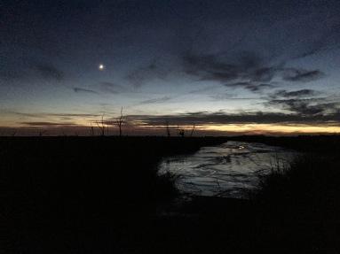 sunset walk oct 17 (65)