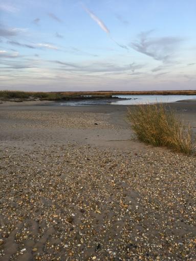 sunset walk oct 17 (75)