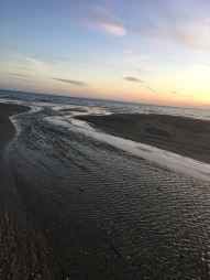 sunset walk oct 17 (81)