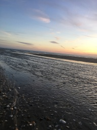 sunset walk oct 17 (83)