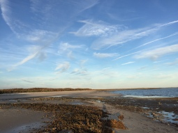 sunset walk oct 17 (9)