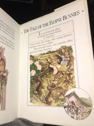 The Flopsy Bunnies