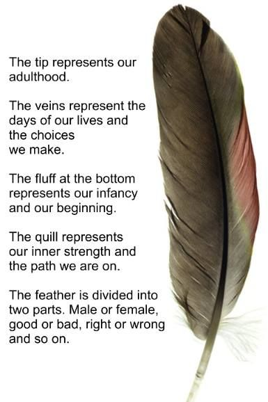 meaning-feather
