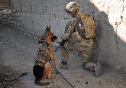 DogsofWar-Afghanistan