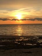 sunset 12 5 (10)