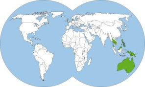 World-map-Oecophylla-smaragdina-weaver-ant